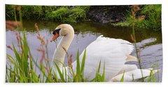 Swan In Water In Autumn Beach Towel