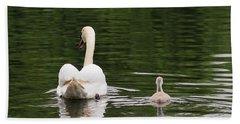Swan Song Beach Sheet by Rona Black