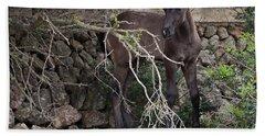 sweet heart - A tender foal wait his beloved mother  Beach Towel