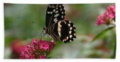 Beach Towel featuring the photograph Sweet Nectar by Denyse Duhaime