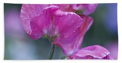Sweet Pea In Pink Beach Sheet
