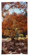 Sycamore Trees Fall Colors Beach Sheet by Tom Janca