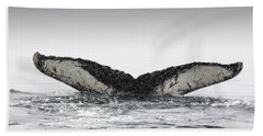 Tail Fin Of Humpback Whale Megaptera Beach Towel