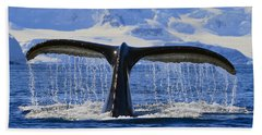 Tails From Antarctica Beach Towel