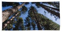 Talls Trees Yosemite National Park Beach Towel