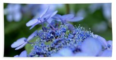 Beach Towel featuring the photograph Taube Lacecap Hydrangea by Scott Lyons