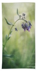 The Arrival Of Spring Beach Towel