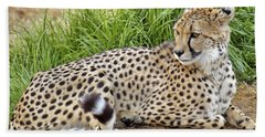 The Beautiful Cheetah Beach Towel