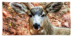 Beach Sheet featuring the photograph The Buck I by Lanita Williams
