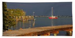 Beach Towel featuring the photograph The Casual Observer by HH Photography of Florida