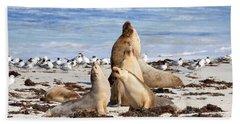 The Choir Beach Towel by Mike Dawson