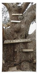 The Climbing Tree - Hurricane Katrina Survivor Beach Sheet