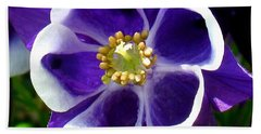 Beach Towel featuring the photograph The Columbine Flower by Patti Whitten