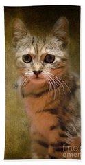 The Cutest Kitty Beach Towel by Klara Acel