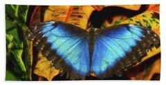 The Electric Blue Morpho Butterfly  Beach Towel