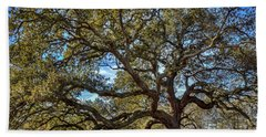 The Emancipation Oak Tree At Hu Beach Towel