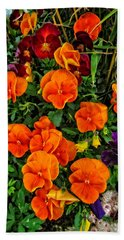 The Fall Pansies Beach Towel