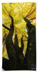 The Family Tree Beach Towel