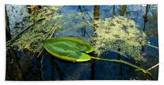 Beach Towel featuring the photograph The Floating Leaf Of A Water Lily by Verana Stark