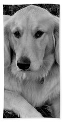 The Golden Retriever Beach Towel