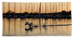 The Golden Takeoff - Swan Sunset And Yachts At A Marina In Toronto Canada Beach Towel