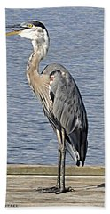 The Great Blue Heron Photo Beach Towel by Verana Stark