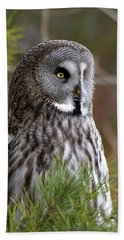 The Great Grey Owl Beach Towel