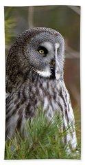 The Great Grey Owl Beach Sheet