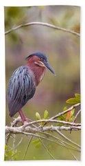 The Green Heron At Blue Hole Beach Towel