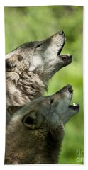 Beach Towel featuring the photograph The Howling by Wolves Only
