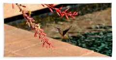 Beach Towel featuring the photograph The Hummer And The Red Yucca by Jay Milo