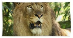 The Lion King Beach Sheet