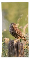 The Little Owl Beach Towel by Roeselien Raimond