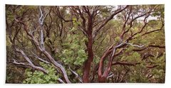 The Manzanita Tree Beach Sheet by Heidi Smith
