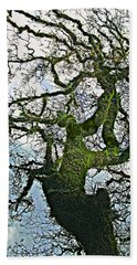 The Old Mossy Oak Tree Against Cloudy Sky Beach Sheet
