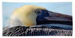 Beach Towel featuring the photograph The Pelican by AJ  Schibig