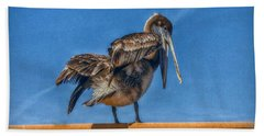 Beach Towel featuring the photograph The Pelican by Hanny Heim