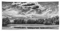 Beach Towel featuring the photograph The Pond by Howard Salmon