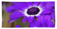 The Purple Daisy Beach Towel