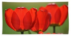The Red Tulips Beach Sheet by Eric Liller