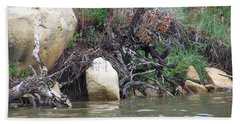 The River's Edge Beach Sheet