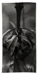 Beach Towel featuring the photograph The Rolled Leaf by Andreas Levi
