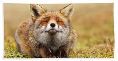 The Smiling Fox Beach Towel by Roeselien Raimond