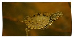 The Southeastern Map Turtle Beach Towel by Kim Pate