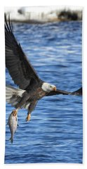 Beach Towel featuring the photograph The Spoils by Coby Cooper