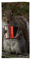 The Squirrel And His Accordion Beach Towel