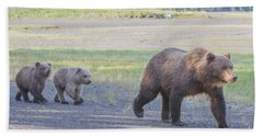 Beach Towel featuring the photograph The Three Bears by Chris Scroggins