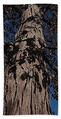 Beach Towel featuring the photograph The Tree Of Life by Deborah Klubertanz