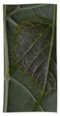 Beach Towel featuring the photograph The Underside Of Frost Grape Leaves by Daniel Reed
