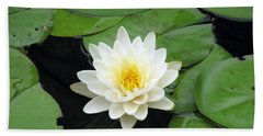 Beach Sheet featuring the photograph The Water Lilies Collection - 01 by Pamela Critchlow